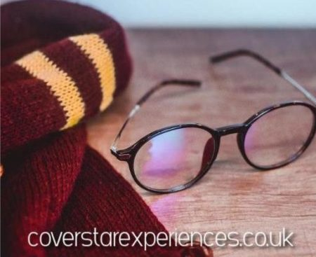 A picture of Harry Potters Glasses and Scarf